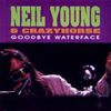 Neil Young and Crazy Horse: Goodbye Waterface